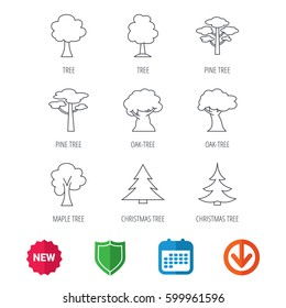Pine tree, maple and oak icons. Christmas trees linear signs. Forest trees flat line icons. New tag, shield and calendar web icons. Download arrow. Vector