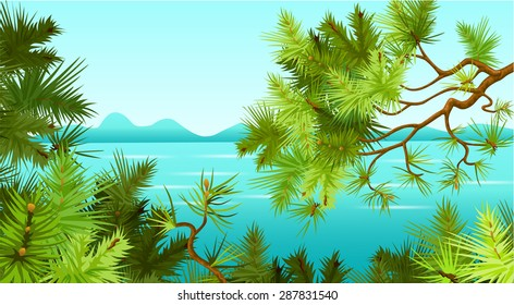 pine trees in the background of the sea. landscape.