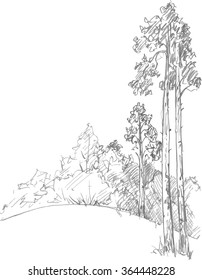 pine trees and bushes drawing by pencil, sketch of wild nature, forest doodle, hand drawn vector illustration
