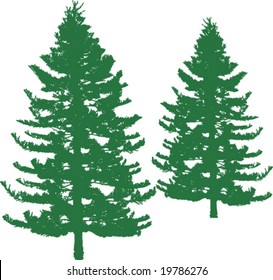 Pine trees as silhouettes with realistic looking, vector