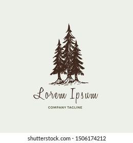 Pine trees vintage illustration. logo design inspiration