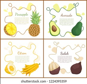 Pineapple and avocado, citron and salak. Posters set with text and tropical fruits, healthy vegetarian products. Exotic meal healthy lifestyle vector