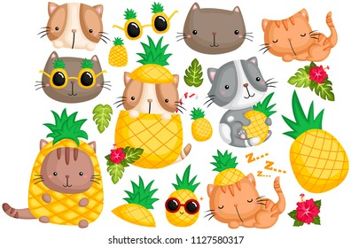 Pineapple Cat Vector Set