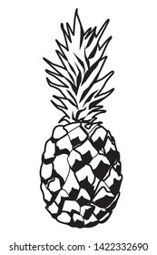 Pineapple fresh natural fruit cartoon vector illustration graphic design