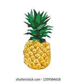 Pineapple hand draw illustration. Pineapple cartoon. Flat design. Organic food. Pineapple vector