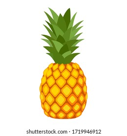 Pineapple. Illustration of pineapple fruit with isolated cartoon style on white. summer fruits, for a healthy and natural life,  Vector illustration.