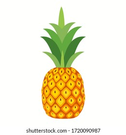 Pineapple. Illustration of pineapple fruit with isolated cartoon style on white. summer fruits, for a healthy and natural life,