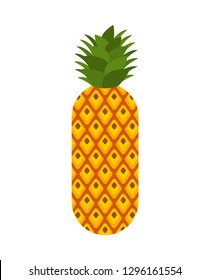 Pineapple isolated. ananas exotic tropical fruit. Vector illustration