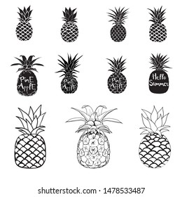 Pineapple set, black silhouette and sketch. Vector illustration.