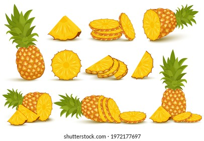Pineapple set. Pineapple collection. Whole and sliced pineapple isolated on white background with clipping path
