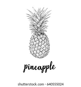 pineapple drawing images stock photos vectors shutterstock