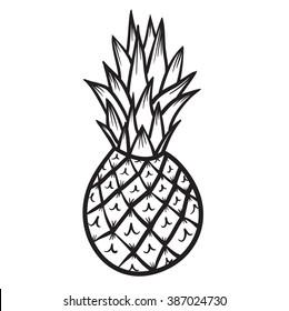 Pineapple vector hand drawn illustration icon