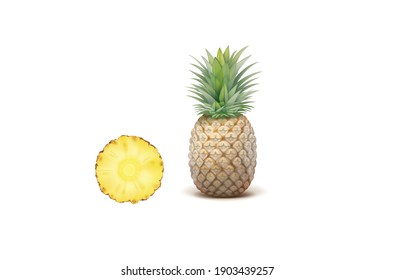 Pineapple vector illustration isolated on white background