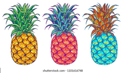 Pineapple vector illustration set. Exotic tropical fruit. Hand drawn. Pop art. Perfect for invitations, greeting cards, posters, textile prints.