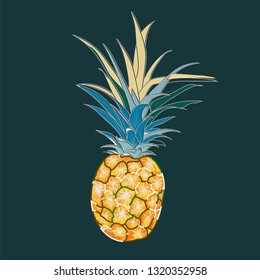Pineapple vector on green background.