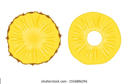 Pineapple vector slice fruit illustration. Realistic ananas piece isolated background, pineapple ring.