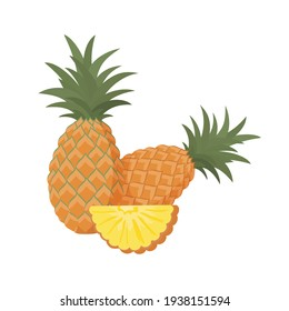 Pineapple, vitamin C source. Dietetic, vegetarian and healthy  food composition. Trendy vector illustration, isolated on white. Good for web and print
