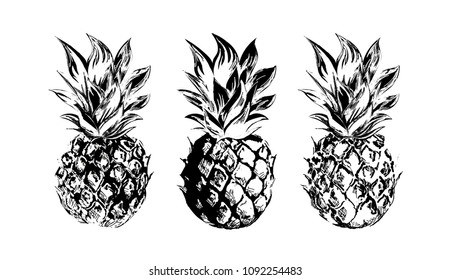 Pineapples. Set of black and white vector images. Hand drawing.