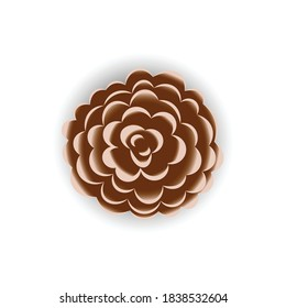 Pinecone or spruce fruit icon, vector illustration design. Christmas collection.