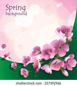 Pink background with spring flowers