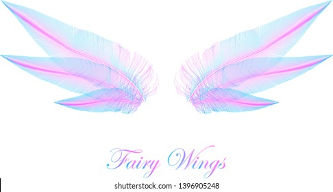 Pink and Blue Wings - Magic Elfin Wings - Concept Vector Design Isolated on White