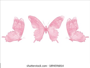 pink butterfly Watercolor colorful butterflies, isolated on white background. blue, yellow, pink and red butterfly spring illustration