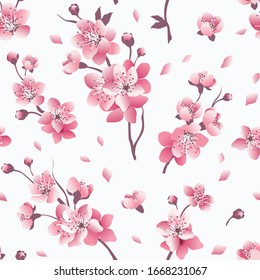 Pink cherry blossom seamless pattern. Floral elegance  spring background. Vector illustration.