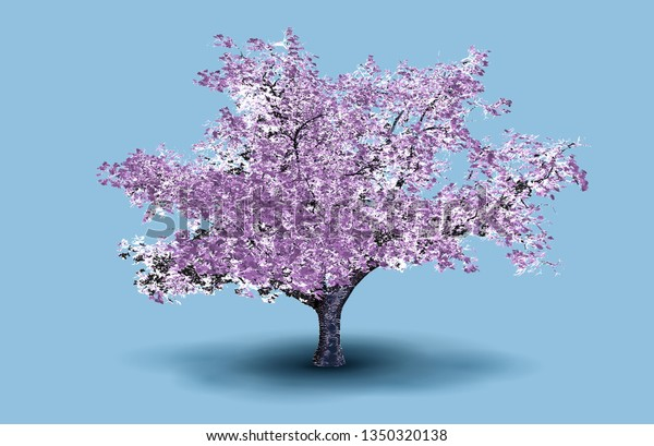 Get Cherry Blossom Tree Background Phone Wallpapers