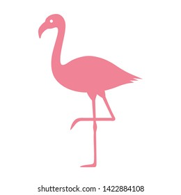 Pink flamingo bird flat vector color icon for wildlife apps and websites