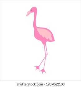 Pink flamingo doodle vector. Hand drawn stock illustration. Isolated on white background. Cartoon children's theme
