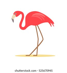 Pink flamingo. flat vector illustration isolate on a white background. easy to use