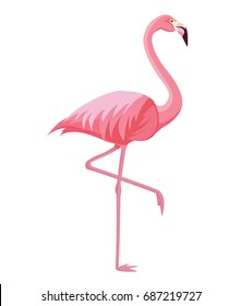 Pink flamingo on a white background. Vector illustration.