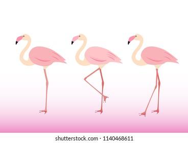 Pink flamingos  character set.