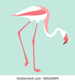 Pink flamingos vector illustration style Flat