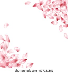 Pink flower flying petals confetti vector corners. Floral pattern on white background. Spring blossom isolated elements. Cherry bloom falling parts. Frame or border design.