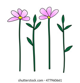 Pink flowers and leafs illustration vector