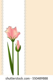 Pink flowers on a background of white lace thin rectangle.Vector illustration.