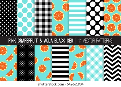 Pink Grapefruit Vector Patterns with Aqua, Black and White Chevron, Stripes, Polka Dots and Gingham. Grapefruit Slices on Aqua Blue Background. 50s Rockabilly Style. Pattern Tile Swatches Included.