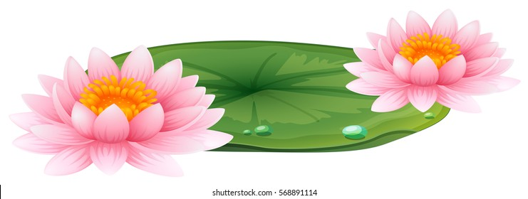 Pink lotus on green leaf illustration