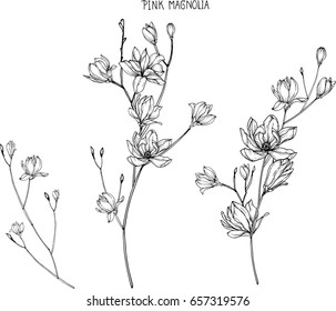 Flower Drawing Images Stock Photos Vectors Shutterstock