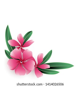 Pink nerium oleander flower bouquet with green leaves isolated on white background. Vector illustration