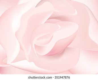 pink peony macro abstract flover vector background