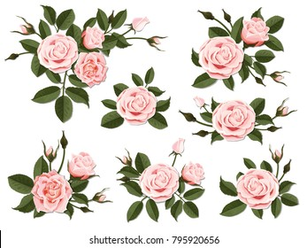 Pink rose boutonniere. Set for floral design of a greeting, wedding or invitation card. Bouquet of decorative garden flower. Bud, petals and leaves of plant.
