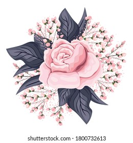 pink rose flower with buds and leaves painting design, natural floral nature plant ornament garden decoration and botany theme Vector illustration
