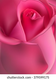 Pink rose macro. EPS 10 vector file included