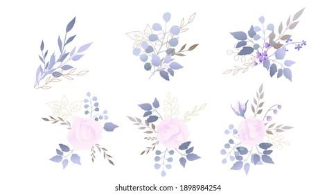 Pink rose with silver dollar tree leaves. Flower set. Vector illustration.