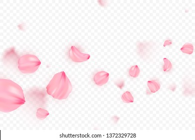 Pink sakura falling petals vector background. 3D romantic illustration. Transporent banner with sakura. Love card