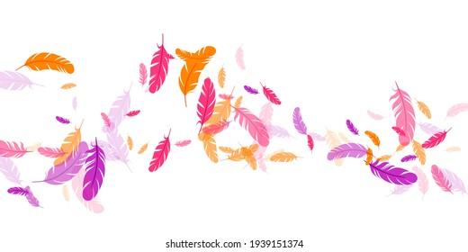 Pink violet orange feather floating vector background. Flying bird plumage illustration. Abstract fluffy soft plumage, feather floating  isolated. Macro graphic design. Bright boa hackle.