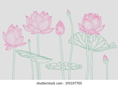 pink water lilies on a light gray background