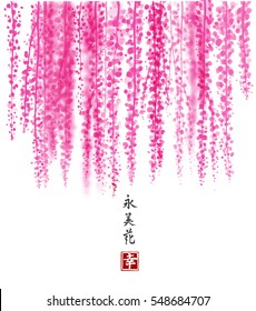 Pink Wisteria hand drawn with ink on white background. Contains hieroglyph - happiness, eternity, beauty, flower. Traditional oriental ink painting sumi-e, u-sin, go-hua. Bunches of flowers.